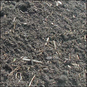 16-Finely-Shredded-Compost.jpg