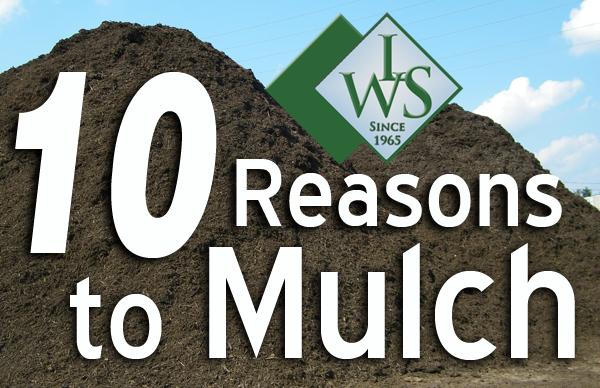 mulch Maryland, Carroll County, mulch cost per yard, mulch dye, mulch for sale, mulch manufacturing, mulch prices, mulch prices per yard, mulch sale, mulch solutions, mulch suppliers, mulch types, mulch wholesale