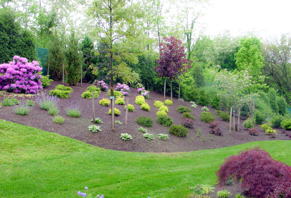 Beautiful Front Yard Landscaping 8 Insider Secrets