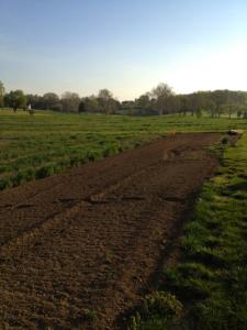 Garden Supply Carroll County | Spring Planting Maryland