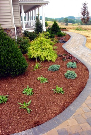 How To Make A Mulch Bed 1 Plan The Edges