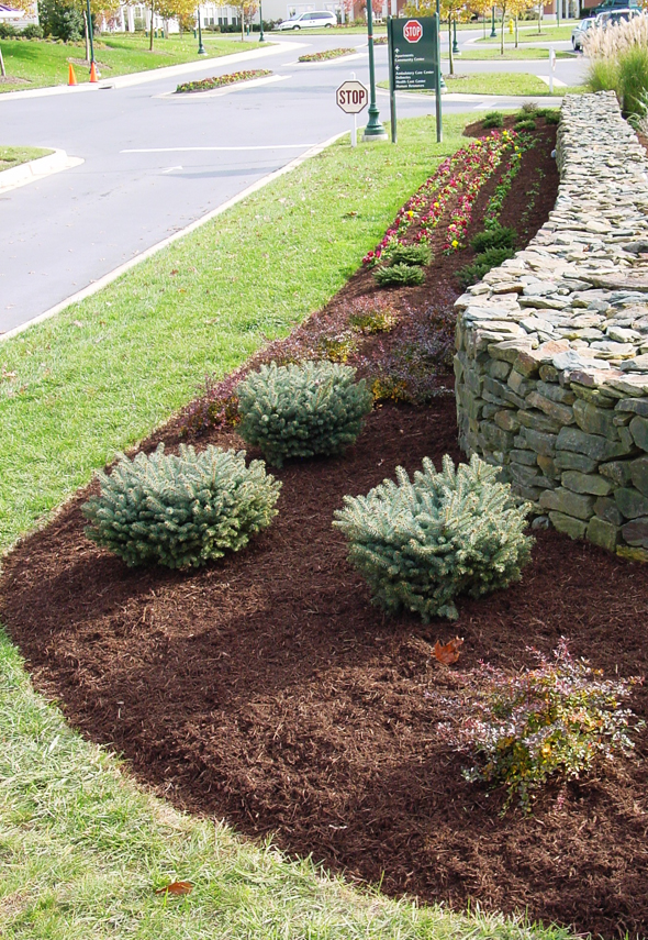 How to make a mulch bed | mulch westminster maryland