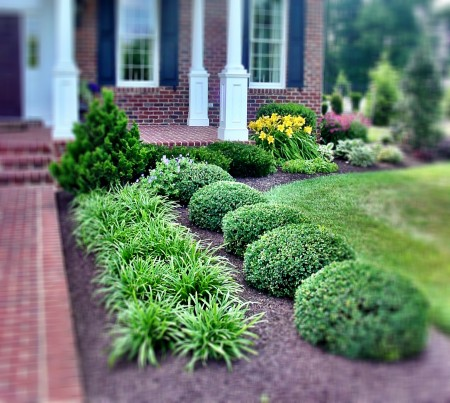 Get the scoop on cubic yards mulch pricing in maryland for Square front yard landscaping ideas
