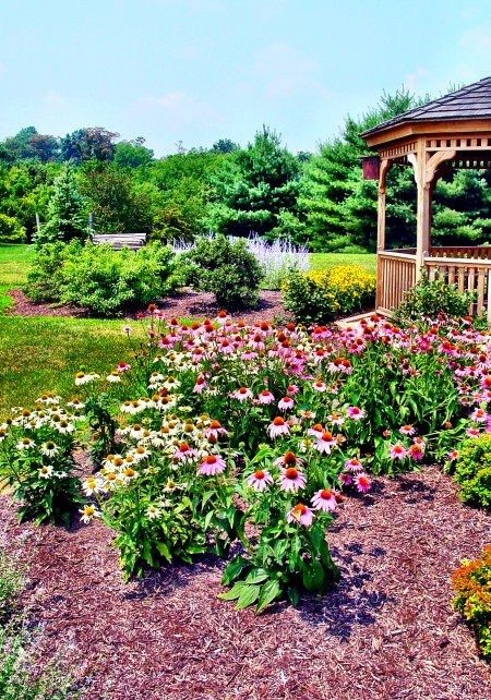 Bags Of Mulch Mulch Prices Topsoil Calculator How Much