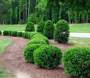 landscape supply Carroll County Maryland | mulching Westminster Maryland | mulch Hampstead Maryland