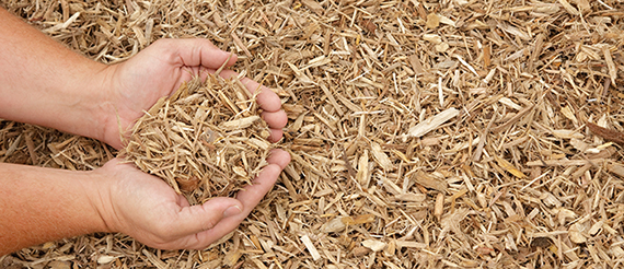 mulch and planting | Carroll County | Westminster Maryland | Hampstead MD