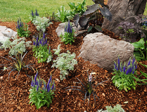 The Inside Scoop On Mulch And Why You Should Use It In Your Garden