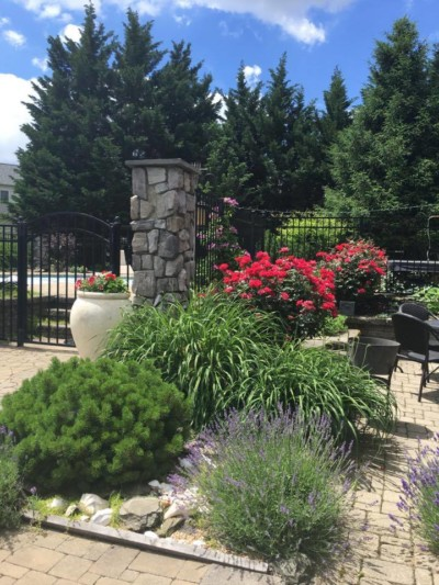 pool patio landscaping-westmisnter=md - westminster lawn
